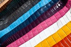 Regenbogen des Leders Stockbild