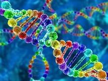 Regenbogen DNA (Desoxyribonukleinsäure) Stockbild