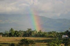 Regenbogen in einem Bauernhof in den Philippinen lizenzfreie stockbilder