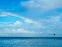 Regenbogen-Ende - Fischadler-Nest Lizenzfreie Stockfotos