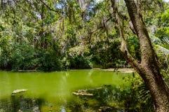 Regenbogen entspringt Fluss Lizenzfreie Stockfotografie