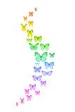 Regenbogen farbige Schmetterlinge Lizenzfreies Stockfoto