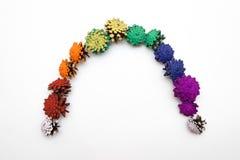 Regenbogen gemacht von gemalter Kegelkiefer Lizenzfreie Stockfotos