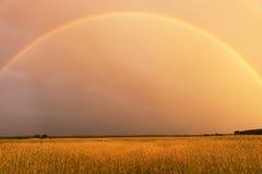 Regenbogen im Abendhimmel Stockbilder