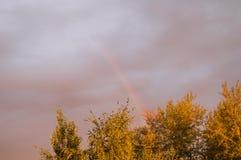 Regenbogen im dunklen Sturmhimmel über den grünen Bäumen im Sonnenuntergang Lizenzfreie Stockfotos