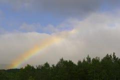 Regenbogen im Himmel über dem Wald Lizenzfreies Stockbild