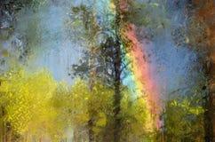 Regenbogen im Wald Stockfoto