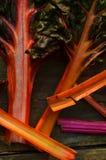 Regenbogen-Mangoldgemüse Stockfoto