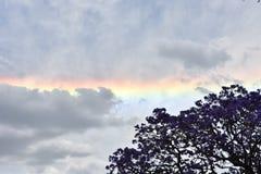 Regenbogen in Palermo Stockfoto