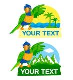 Regenbogen-Papagei gegen das Hintergrund-Meer, †‹â€ ‹Palmen und Berge, greifen den Text-Raum Lizenzfreies Stockfoto