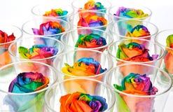 Regenbogen-Rosen Stockbild