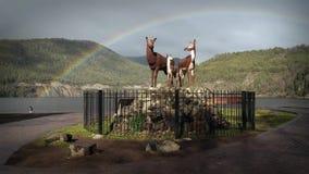 Regenbogen in San Martin De Los Andes, Argentinien stock video footage