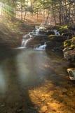 Regenbogen-Sonnenlicht, das auf Wolf Creek Falls hinaufklettert Lizenzfreies Stockbild