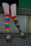 Regenbogen-Strümpfe Stockfoto