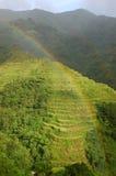 Regenbogen- und Reisterrassen Stockfoto