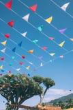 Regenbogen von den bunten mit dem Kopfe stoßenden Flaggen gebunden an Dragon Tree auf blauem Himmel auf Hintergrund, Spanien lizenzfreie stockfotos