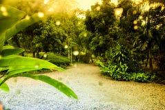 Regenbogenbild Sonniger Regen in Thailand Stockbild