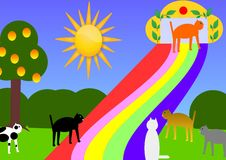Regenbogenbrücke für Katzen lizenzfreie abbildung