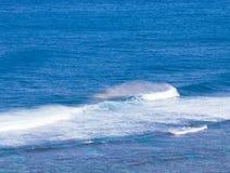 Regenbogenfarben im Spray von den Wellen Stockfotos