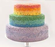 Regenbogenkuchen Stockfotografie