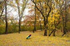 Regenbogenregenschirm im Herbstpark Stockfotografie