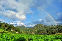 Regenboog aan de hemel Stock Foto