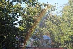 Regenboog in dalingen van regen Royalty-vrije Stock Foto's