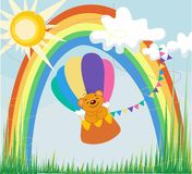 Regenboog een beer door een regionale oogballon Stock Foto's