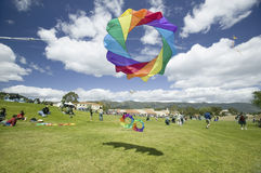 Regenboog het gekleurde vlieger vliegen Royalty-vrije Stock Afbeelding