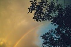 Regenboog na de regen Stock Afbeelding