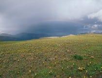 Regenboog op de Continentale Waterscheidingssleep, San Juan Range, Colorado Stock Foto