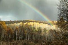 Regenboog op de donkere hemelachtergrond en verlicht het bos Royalty-vrije Stock Foto's