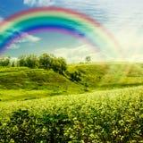 Regenboog op de weide. stock foto's