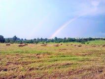 Regenboog op het gebied na zware regen stock fotografie