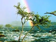 Regenboog op rivier stock foto