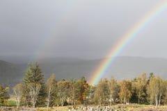 Regenboog over de Hooglanden van Schotland Stock Fotografie
