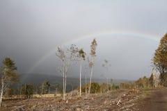Regenboog over de Hooglanden van Schotland Stock Afbeelding