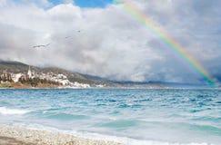 Regenboog over de meerwhit zeemeeuwen stock foto's
