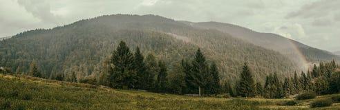 Regenboog over een bergbos stock foto's