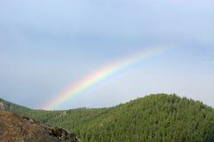 Regenboog over een taiga, park Stolby Royalty-vrije Stock Foto