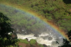 Regenboog over Iguazu stock foto's
