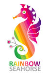 Regenboog Seahorse. Stock Fotografie
