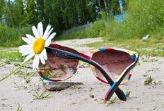 Regenboog sunglass Stock Fotografie