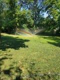 Regenboog in tuin stock fotografie