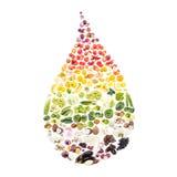 Regenboog van verschillende ruwe vruchten en groenten in de dalingsvorm die wordt gemaakt stock foto's