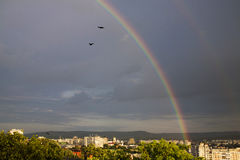 Regenboog, verbazende mening na regen Royalty-vrije Stock Foto