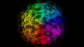 Regenboogbloem van het leven met aura vector illustratie
