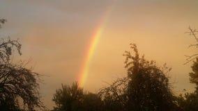 Regenboogdag stock afbeelding