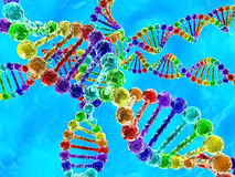 Regenboogdna (deoxyribonucleic zuur) met blauwe achtergrond Royalty-vrije Stock Foto's