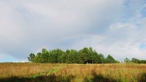 Regenboogfenomeen stock videobeelden